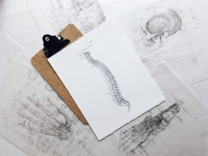 brown and black clipboard with white spinal cord print manual
